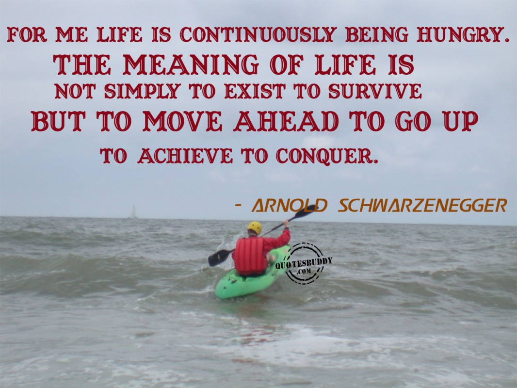 Meaning Of Life Quote 4 Picture Quote #1