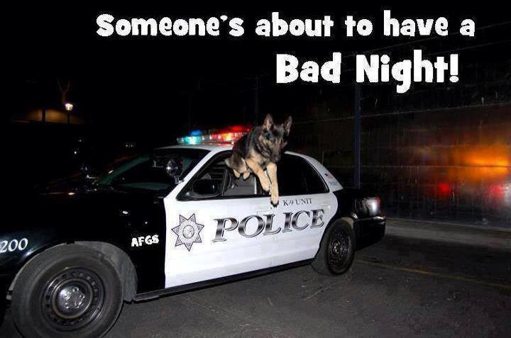 Funny Police Quote 1 Picture Quote #1