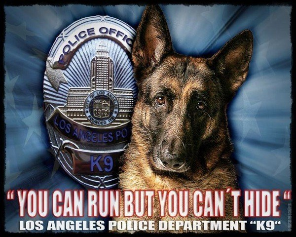 Police Quote 7 Picture Quote #1