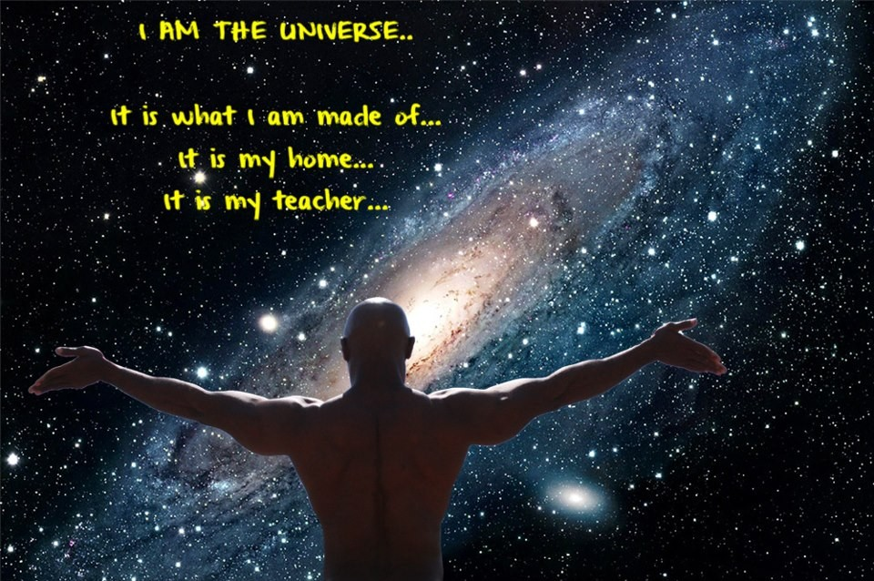 I Am The Universe Quote 1 Picture Quote #1
