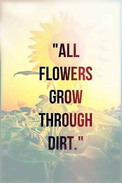 All flowers grow through dirt Picture Quote #1