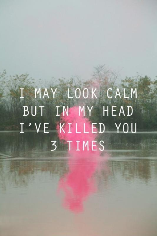 I may look calm but in my head I've killed you 3 times Picture Quote #1