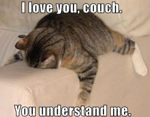 I love you, couch. You understand me Picture Quote #1