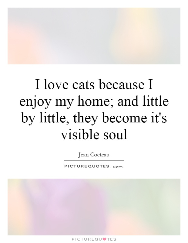 I love cats because I enjoy my home; and little by little, they become it's visible soul Picture Quote #1