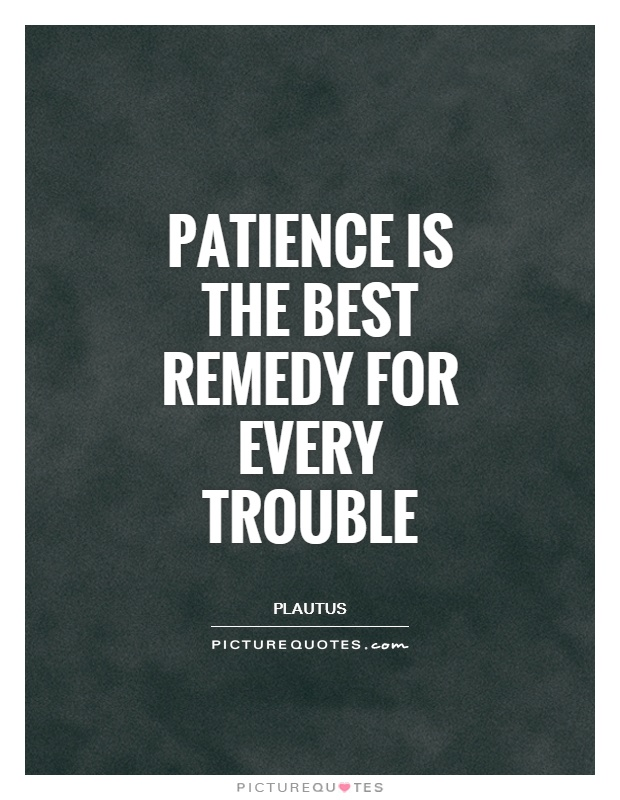 Patience is the best remedy for every trouble Picture Quote #1