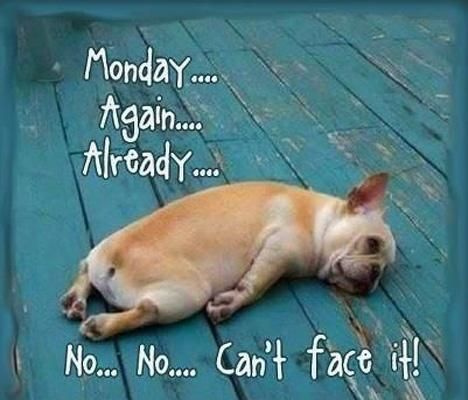 Monday... Again... Already... No... No... Can't face it! Picture Quote #1
