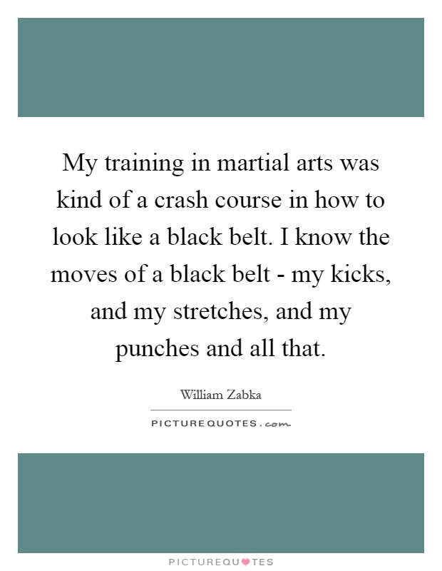 My training in martial arts was kind of a crash course in how to look like a black belt. I know the moves of a black belt - my kicks, and my stretches, and my punches and all that Picture Quote #1