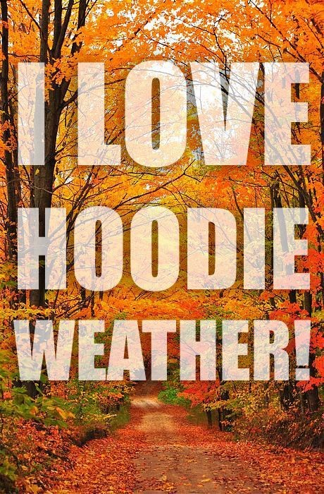 Hoodie Weather Quote 1 Picture Quote #1