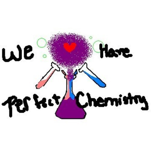 Perfect Chemistry Quote 2 Picture Quote #1