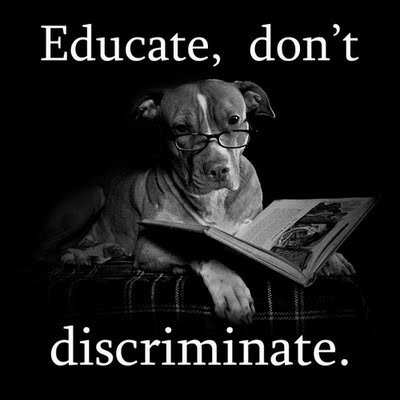 Discrimination Quotes Beauteous Discrimination Quote  Quote Number 620127  Picture Quotes