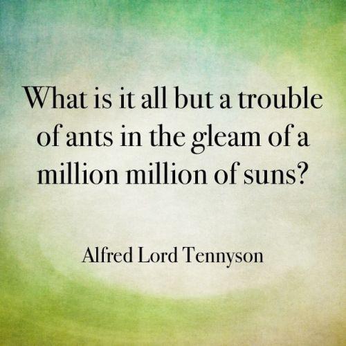 Alfred Lord Tennyson Quote 6 Picture Quote #1