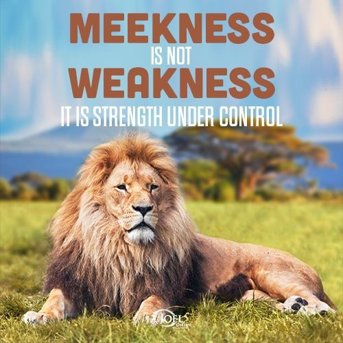 Meekness Is Not Weakness Quote 1 Picture Quote #1