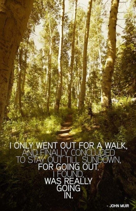 Outdoor Hiking Quote 2 Picture Quote #1