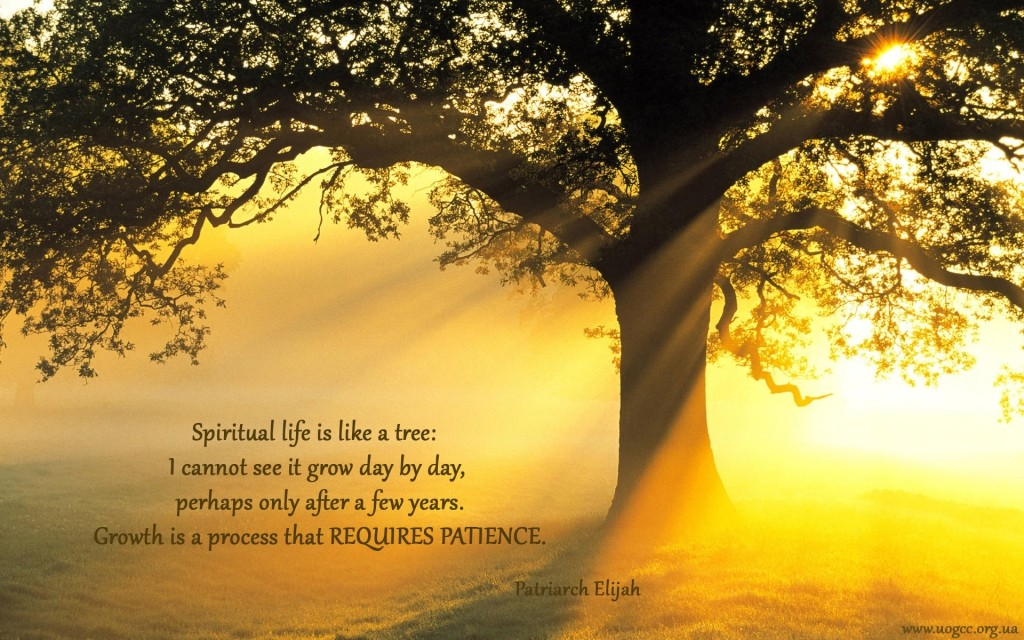 Life Is Like A Tree Quote 2 Picture Quote #1