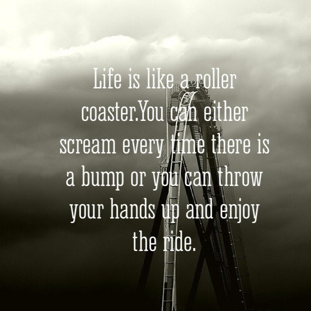 love is like a roller coaster Lessons from a roller coaster matthew 4:18-20 & john like a roller coaster train flying off the tracks as those who love roller coasters know.
