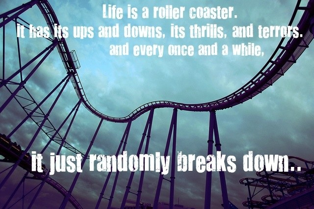 Quote About Life Is Like A Roller Coaster 2 Picture Quote #1