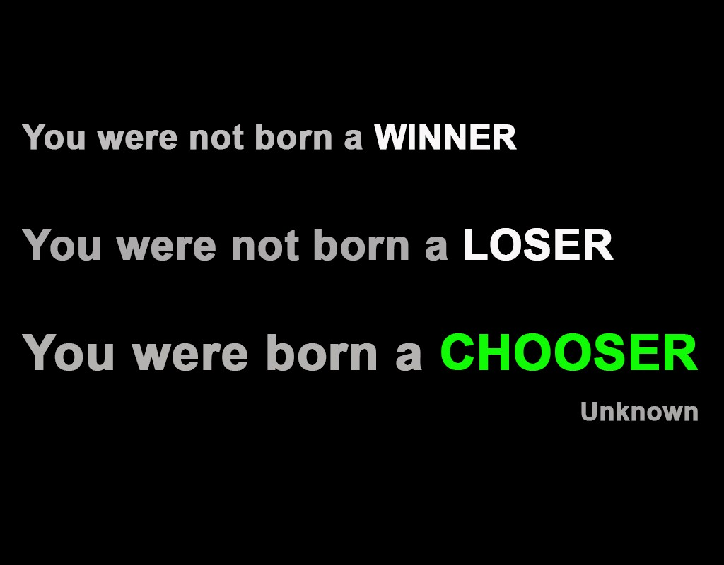 Winner Quote 8 Picture Quote #1