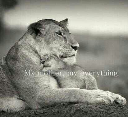 Mothers Love Quote 7 Picture Quote #1