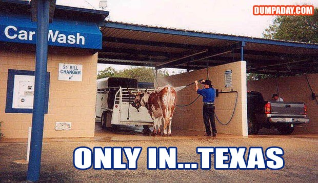 Funny Texas Quote 1 Picture Quote #1