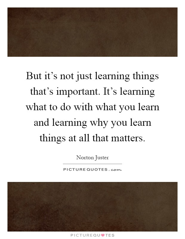 But it's not just learning things that's important. It's learning what to do with what you learn and learning why you learn things at all that matters Picture Quote #1