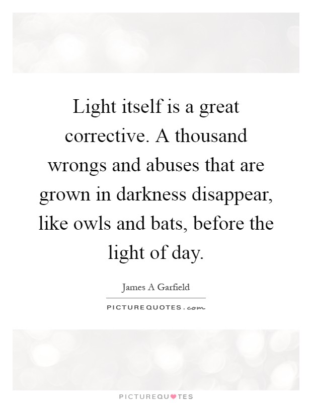 Light itself is a great corrective. A thousand wrongs and abuses that are grown in darkness disappear, like owls and bats, before the light of day Picture Quote #1