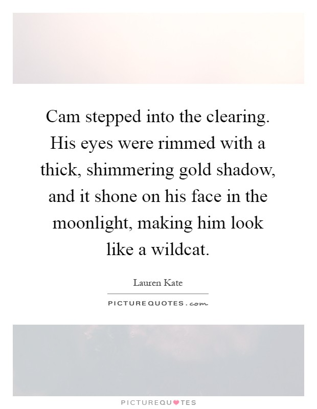 Cam stepped into the clearing. His eyes were rimmed with a thick, shimmering gold shadow, and it shone on his face in the moonlight, making him look like a wildcat Picture Quote #1