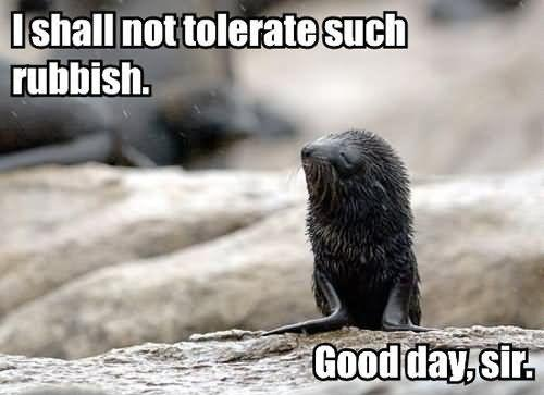 I shall not tolerate such rubbish. Good day, sir Picture Quote #1