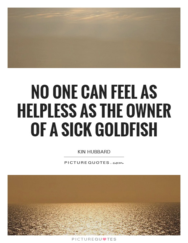 No one can feel as helpless as the owner of a sick goldfish Picture Quote #1