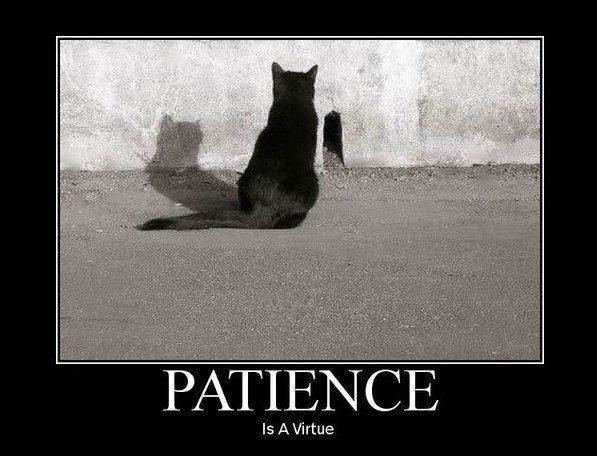 Patience is a virtue Picture Quote #1