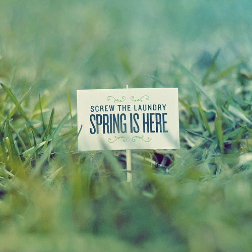 Screw the laundry - spring is here Picture Quote #1