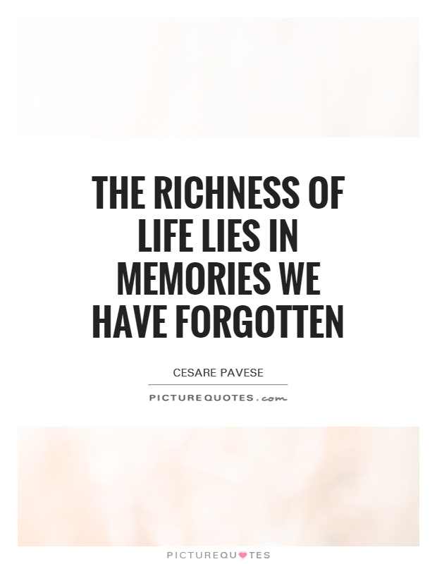 the richness of life lies in memories we have forgotten picture