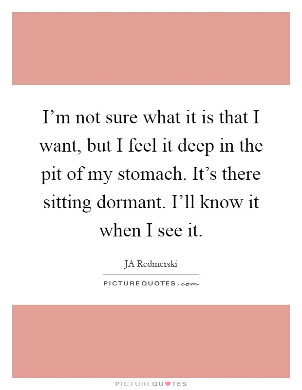 I'm not sure what it is that I want, but I feel it deep in the pit of my stomach. It's there sitting dormant. I'll know it when I see it Picture Quote #1