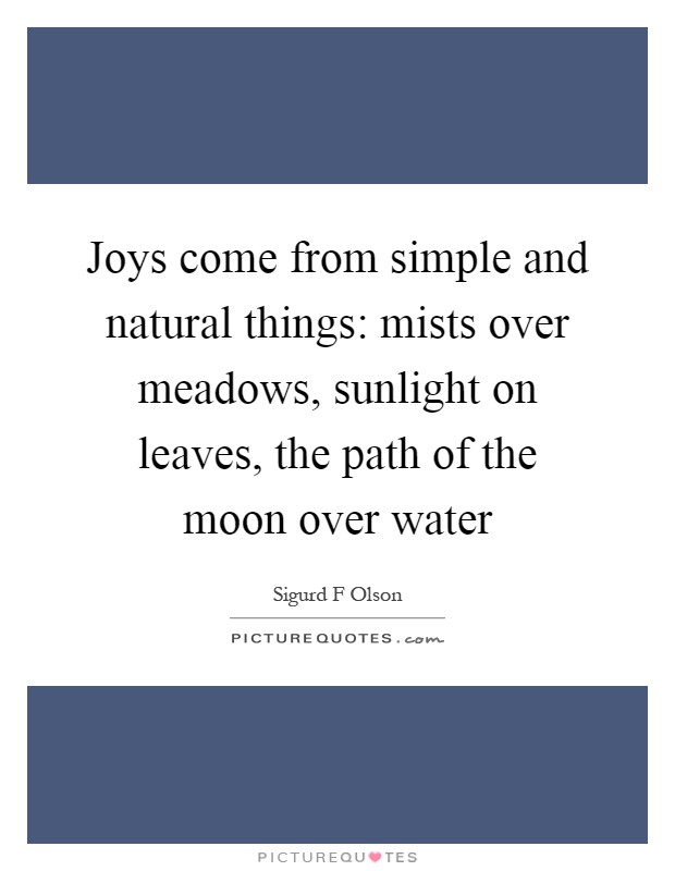 Joys come from simple and natural things: mists over meadows, sunlight on leaves, the path of the moon over water Picture Quote #1