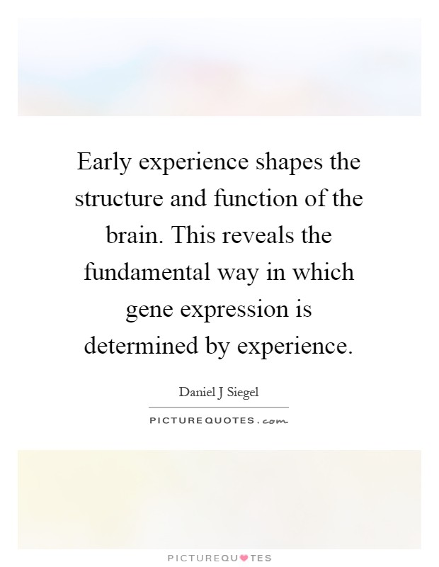 Early experience shapes the structure and function of the brain. This reveals the fundamental way in which gene expression is determined by experience Picture Quote #1