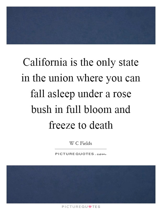 California is the only state in the union where you can fall asleep under a rose bush in full bloom and freeze to death Picture Quote #1