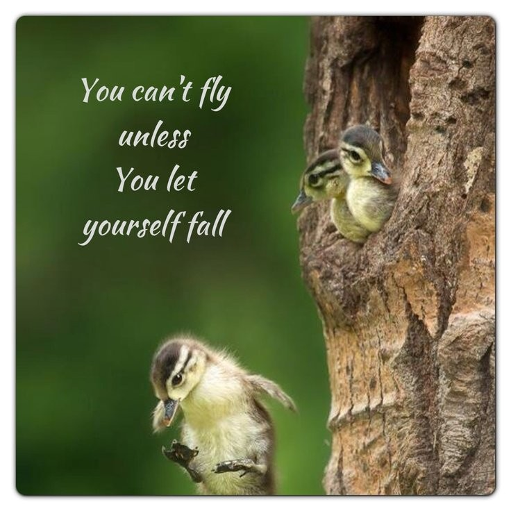 Leap Of Faith Quote 1 Picture Quote #1