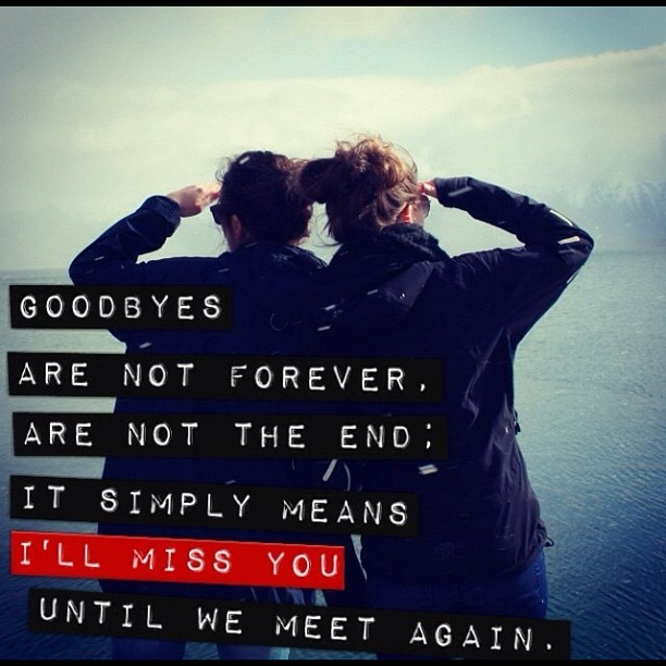 Quotes About Friendship Goodbye Mesmerizing Goodbye Quotes For Friends 29 Picture Quotes
