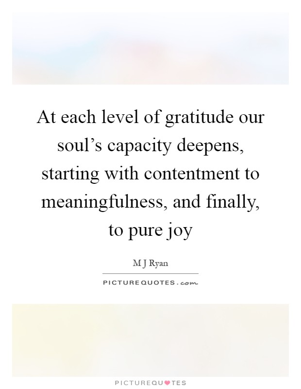 At each level of gratitude our soul's capacity deepens, starting with contentment to meaningfulness, and finally, to pure joy Picture Quote #1