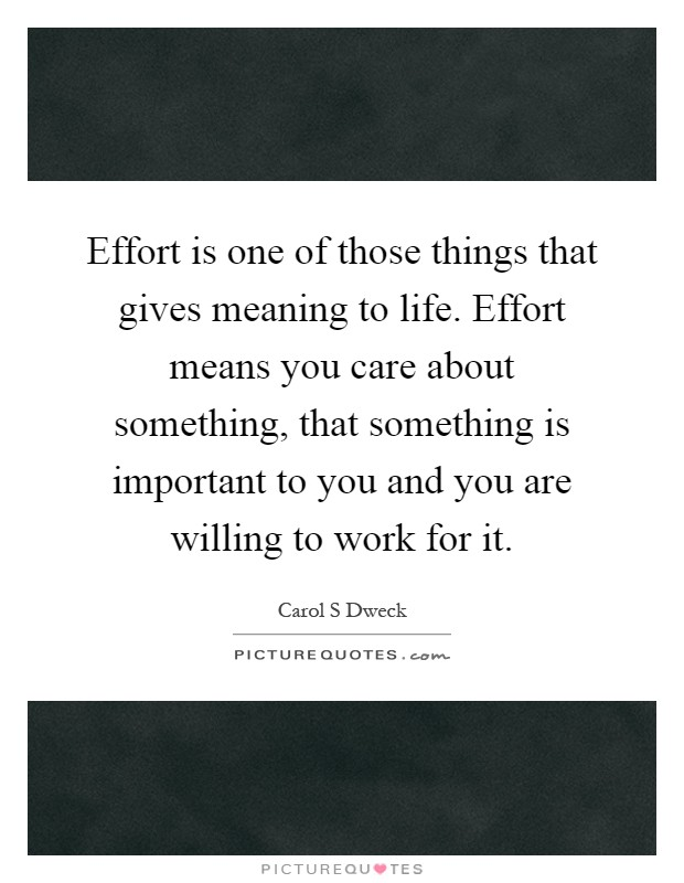 Effort is one of those things that gives meaning to life. Effort means you care about something, that something is important to you and you are willing to work for it Picture Quote #1