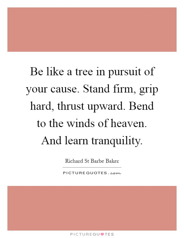 Be like a tree in pursuit of your cause. Stand firm, grip hard, thrust upward. Bend to the winds of heaven. And learn tranquility Picture Quote #1
