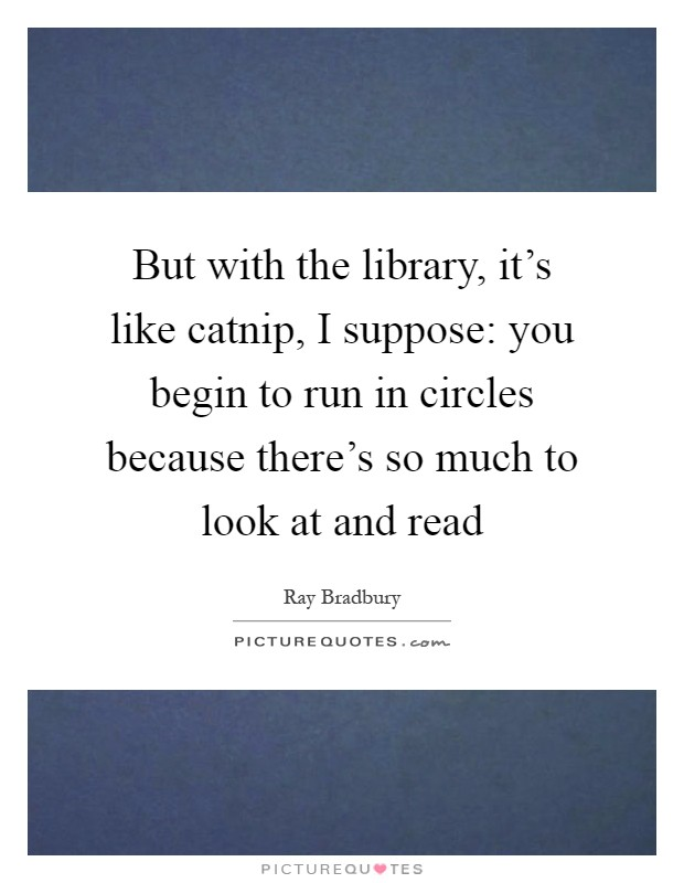 But with the library, it's like catnip, I suppose: you begin to run in circles because there's so much to look at and read Picture Quote #1