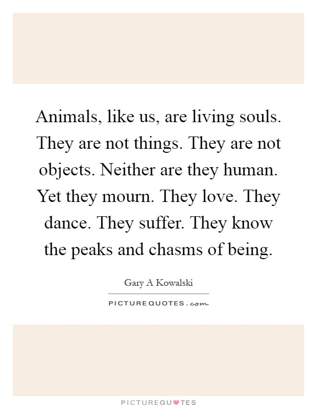 Animals, like us, are living souls. They are not things. They are not objects. Neither are they human. Yet they mourn. They love. They dance. They suffer. They know the peaks and chasms of being Picture Quote #1