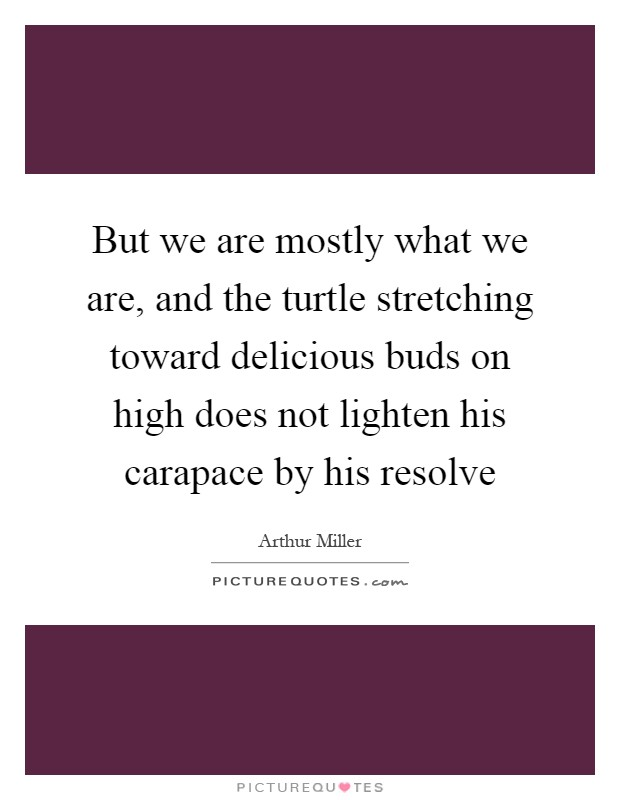 But we are mostly what we are, and the turtle stretching toward delicious buds on high does not lighten his carapace by his resolve Picture Quote #1