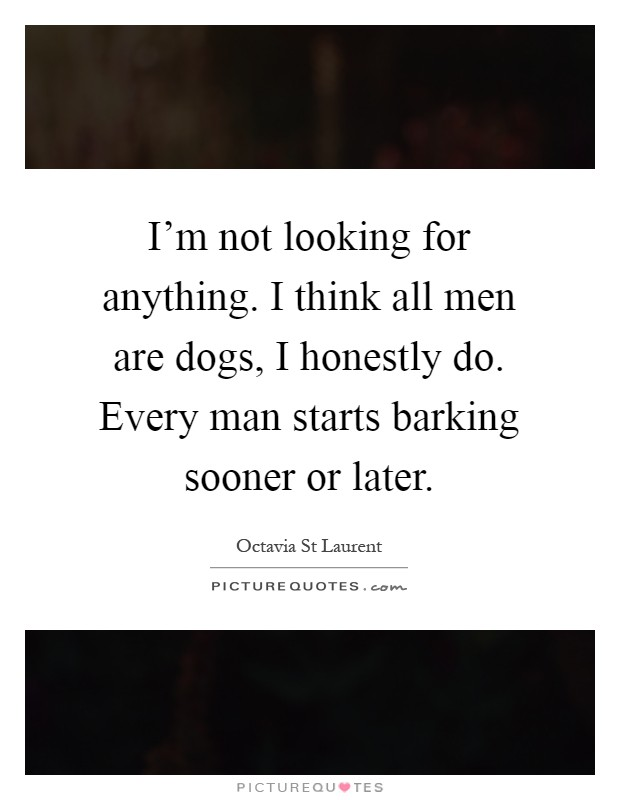 I'm not looking for anything. I think all men are dogs, I honestly do. Every man starts barking sooner or later Picture Quote #1