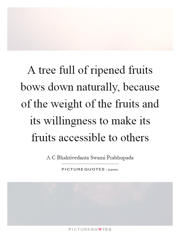 A tree full of ripened fruits bows down naturally, because of the weight of the fruits and its willingness to make its fruits accessible to others Picture Quote #1