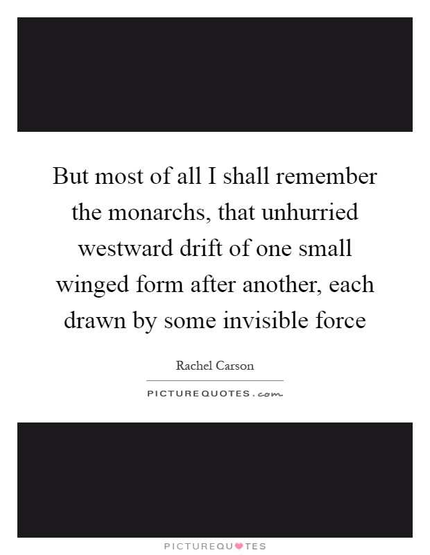But most of all I shall remember the monarchs, that unhurried westward drift of one small winged form after another, each drawn by some invisible force Picture Quote #1