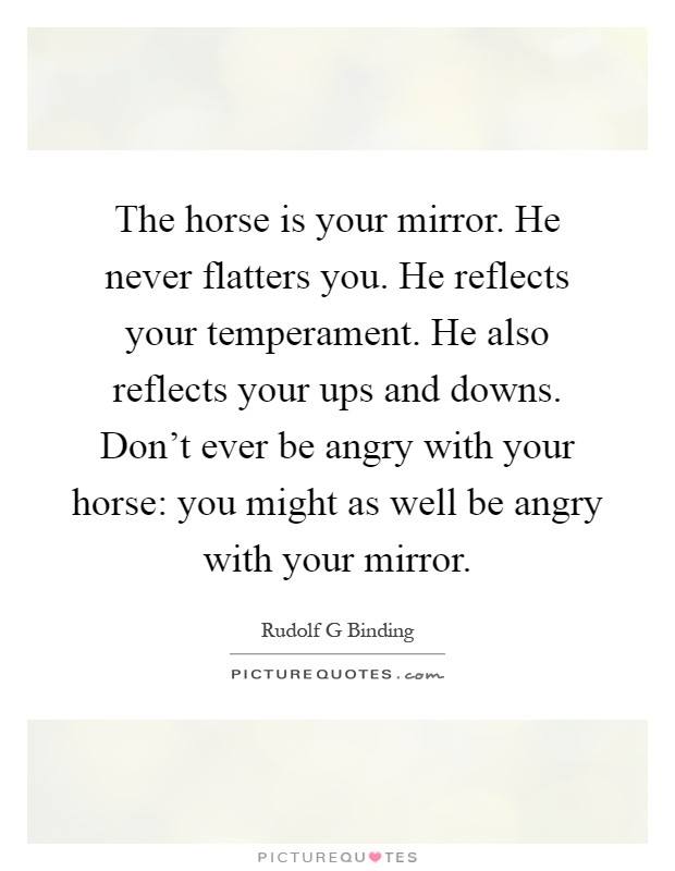 The horse is your mirror. He never flatters you. He reflects ...