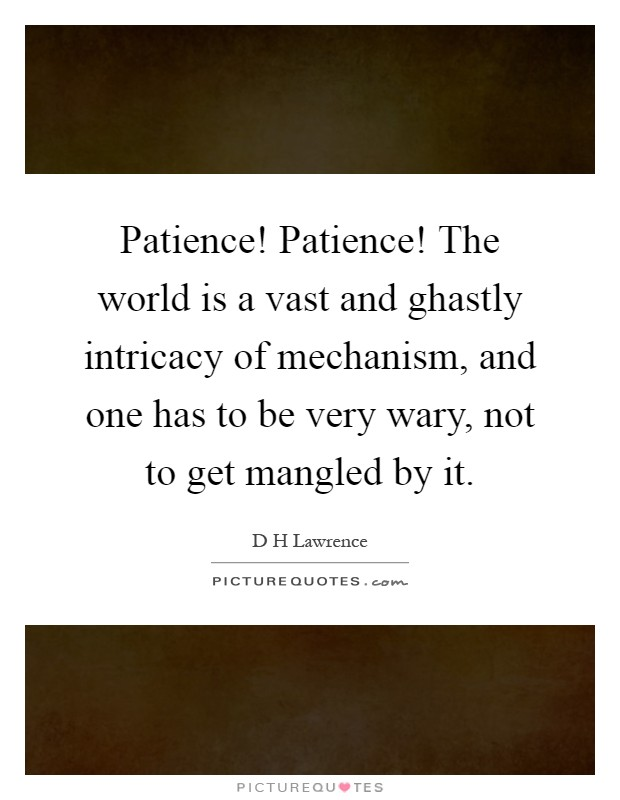 Patience Patience The World Is A Vast And Ghastly Intricacy Of