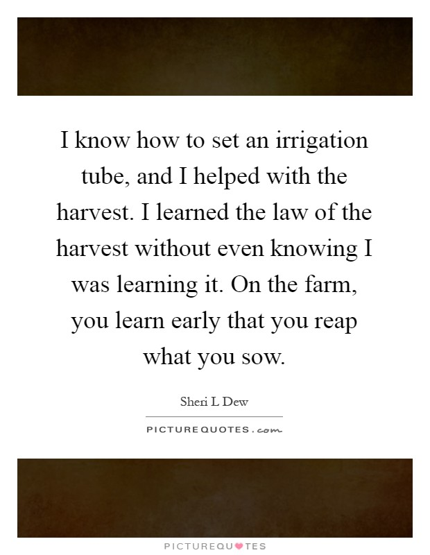 I know how to set an irrigation tube, and I helped with the harvest. I learned the law of the harvest without even knowing I was learning it. On the farm, you learn early that you reap what you sow Picture Quote #1