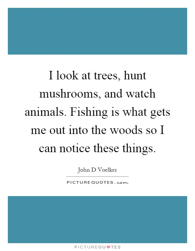 I look at trees, hunt mushrooms, and watch animals. Fishing is what gets me out into the woods so I can notice these things Picture Quote #1
